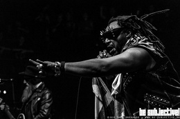 20191202 Skindred 08 bs TheaDrexhage